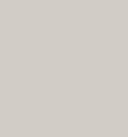 Jayline Supermatt Light Grey