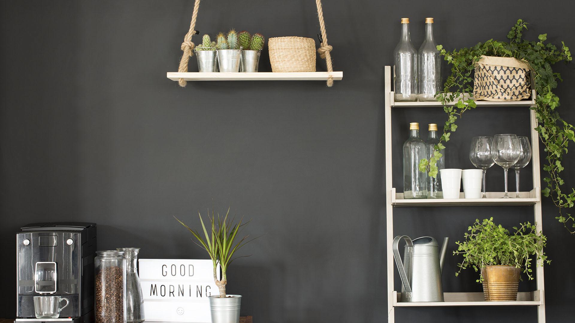 Our favourite kitchen plants